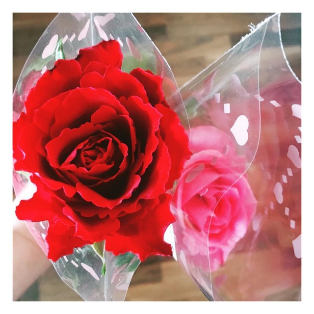 The other day Iwan got us this pretty roses Thehellip