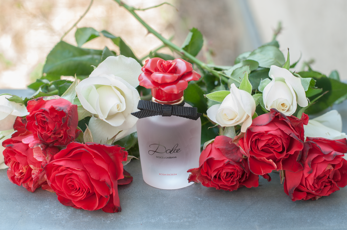 Must have of the Month: Dolce Rosa Excelsa