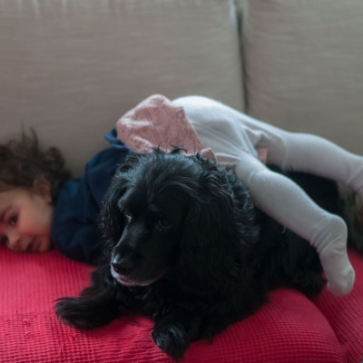 Dogs with kids