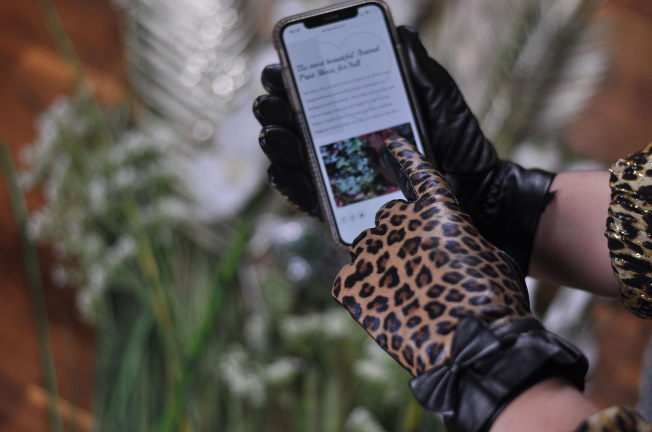 Touchscreen gloves